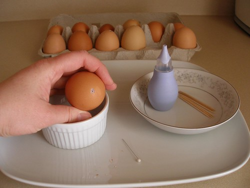 How to Blog Eggs- 4