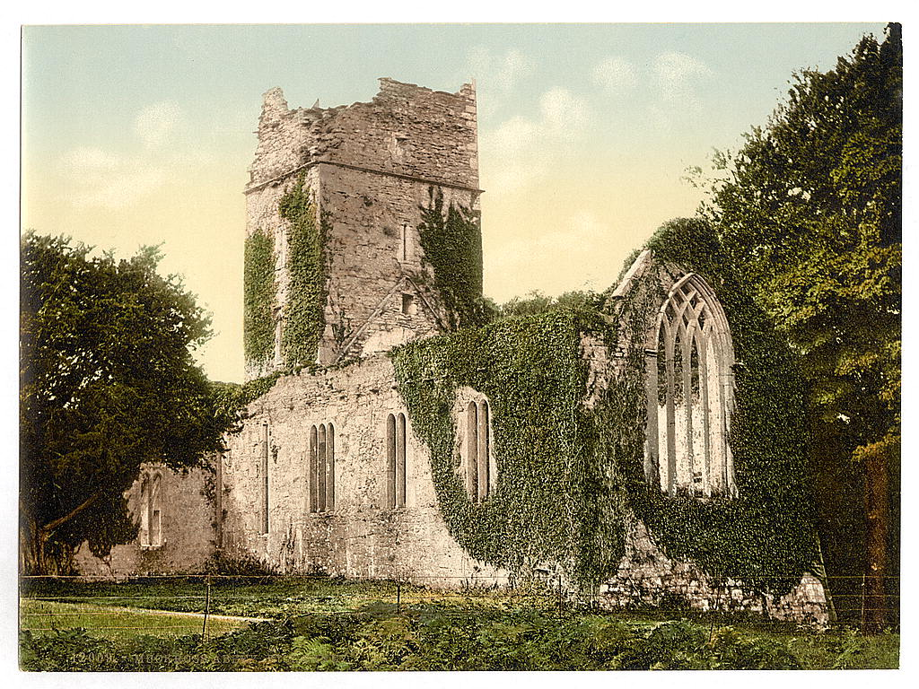 Muckross Abbey, Killarney. County Kerry, Ireland