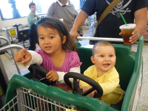 shopping cart driving.