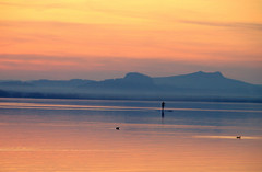 towards sundown (Odin76) Tags: lake sundown bodensee constance 500d