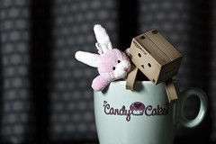 Just another day in the mug (edmundlwk) Tags: pink macro rabbit bunny love cup canon japanese friendship cupcake mug figurine danbo 100mmf28 50d candycakes