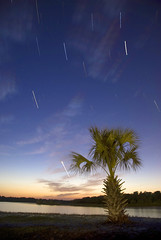22 Minutes at Bonita Bay (MattGerlachPhotography) Tags: sunset sky cloud water stars florida trail palmtree panamacity startrails tyndallairforcebase bonitabay mattgerlachphotography