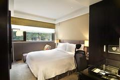 タンゴ ホテル台北南西