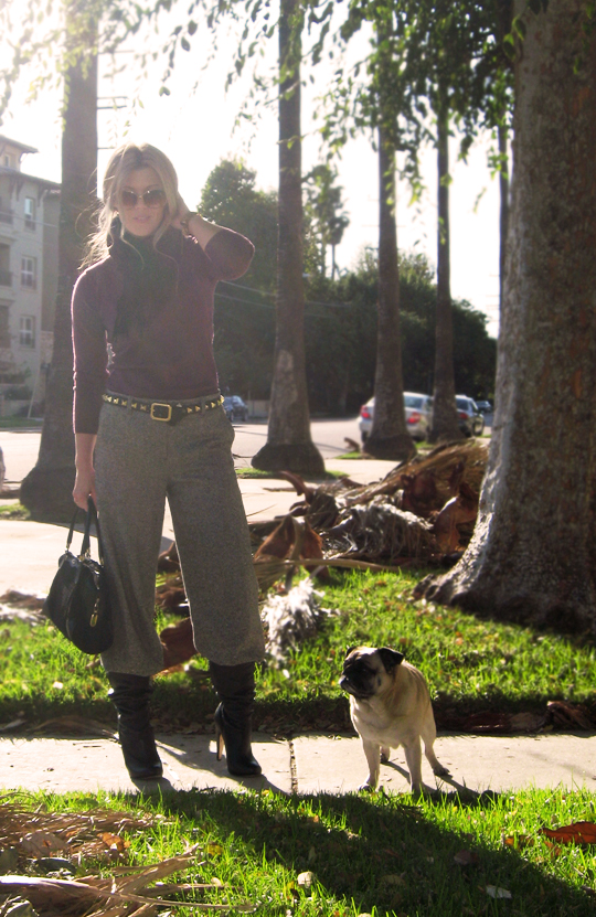 burgundy-halston-sweater-tweed-pants-boots-pug-1