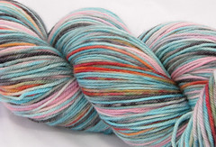 Hadassah on Kona DK Superwash Merino 4 oz. (...a time to dye)