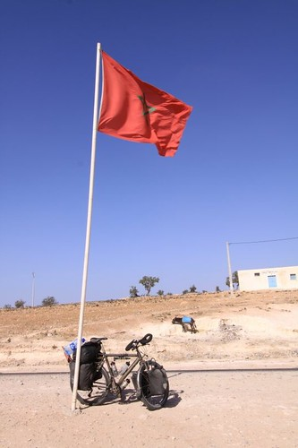 A bike, two flags and a donkey...
