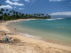 Napili Beach (Dan Stanyer (Northern Pixel)) Tags: ocean blue seascape beach water beautiful beauty swimming landscape hawaii coast sand scenery paradise pacific northwest shoreline scenic maui hawaiian napili seahouse napilibeach napilikai