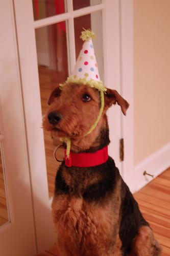 Birthday boy.