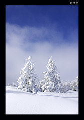 (Zopidis Lefteris) Tags: trees winter mountain snow ski mountains tree hellas resort greece macedonia skiresort resorts allrightsreserved skiresorts katerini skiarea pieria mountainous hellenic lefteris     zop    snowresort elatoxori   zopidis elatochori goldstaraward                     photographerczopidislefteris c heliographygroup heliographygroupmember photographerzopidislefteris  photographerzopidislefterisc c  allphotosarecopyrightedbyzopidislefteris  copyright