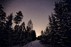 Road to Stars (neatmummy) Tags: road winter snow cold night forest photoshop canon finland dark stars eos star woods freezing wideangle adobe ii l 5d astronomy ursamajor otava f28 lightpollution lightroom markii milkyway splittone 1635 1635mm lieto f28l varsinaissuomi 5d2 finlandproper