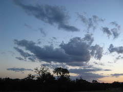 Summer sky (Jayanthi Sreejith) Tags: differentmoods texansky differentplaces