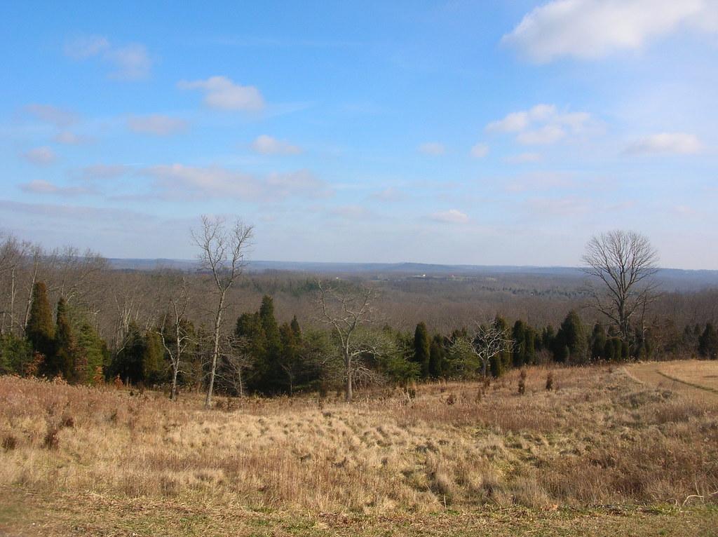 Eckert Rd. view