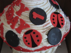 Giant Lady bug themed cupcake