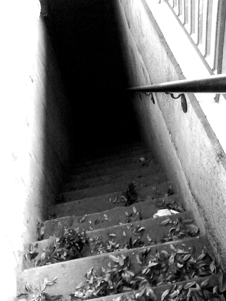 iPhoneograpy: The Stairwell