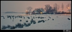 Winter,Groningen,the Netherlands,europe (Aheroy) Tags: city winter snow holland art netherlands dutch architecture night photomanipulation fun town europe colours different sneeuw arts nederland surreal hallucination groningen stad beautifull aheroy aheroyal