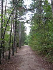 Beavers Bend Park hiking trail