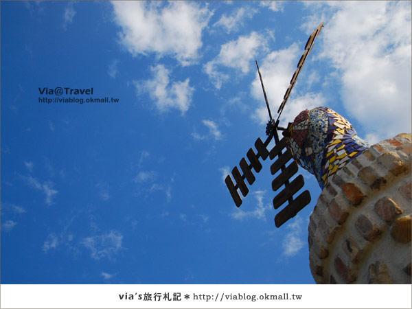 【魔法咖啡屋】Mofa Cafe~在南投國姓鄉來一杯魔法咖啡50