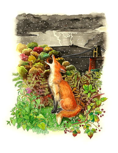 Fox and hailstones