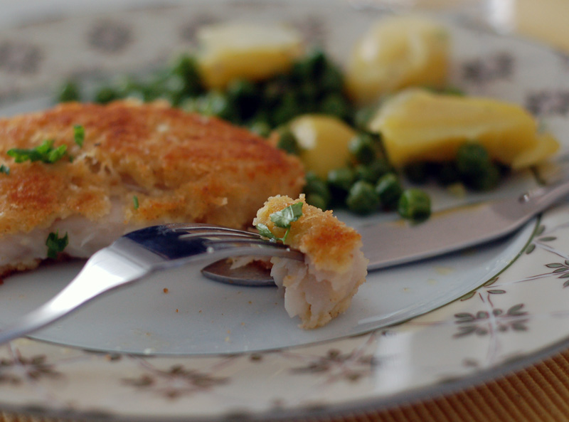 Parmesan-crushed white fish