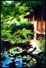 Tea House and Pond (Lyle58) Tags: wood blue brown house painterly building tree green garden japanese pond colorful branches peaceful waterlilies serenity serene lilypads teahouse tranquil resurrect rockfordillinois andersonjapanesegardens topazlabs simplify20