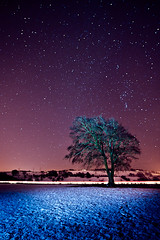 Tree, Strathaven (PMMPhoto) Tags: longexposure blue orange snow cold tree night stars landscape paul lights scotland nikon purple flash  mcgee trails scottish fp lanarkshire strathaven sb800 paulmcgee strobist d700 donotusewithoutpriorpermission pmmphoto paulmcgee