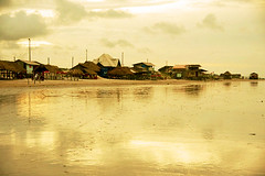 In the light of day (flavita.valsani) Tags: sunset sea beach brasil reflections island golden sand insel isla ilha par illa eiland isola  maracan le saari algodoal     maiandeua  valsani insul