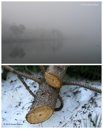 Diptych: Cold
