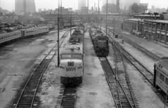 Scan10626cc (citatus) Tags: train cn viarail torontoroundhouse bw 1970 1980 minolta srt 102 ontario canada toronto budd locomotive 6772 4016