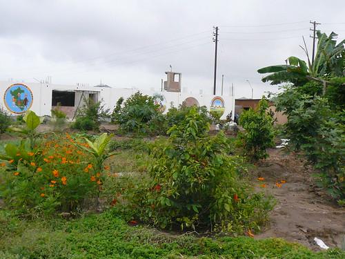 der Garten März 2010