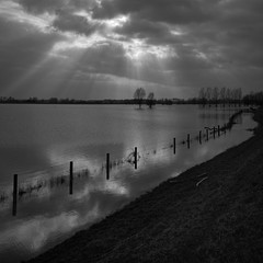 Flood (Hans van Reenen) Tags: sky reflection fence river flood fav50 nederland thenetherlands meadow weiland waal rivier dodewaard arbolitos betuwe k7 uiterwaarde hoogwater outermarches andelst 20100311