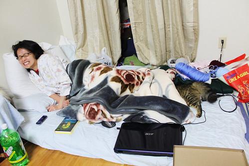 29 / 365 / Hybrid Human-Cat