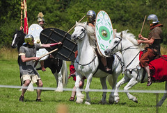 Mounted Roman Warriors Battling Foot Soldiers, Kelmarsh 2009 (Steve Greaves) Tags: red horses italy rome field leather silver army gold countryside italian ancient war uniform catchycolours dress arms roman juliuscaesar sandals military helmet battle horsemen event riding hedge mounted sword imperial conflict soldiers historical shield warriors recreation armour period invasion reenactment horseback troops romanempire reenactors equine authentic legion romans invading armoury reconstruction invaders cohort legionary gallop riders spear horseman livinghistory reenacting warfare breastplate englishheritage kelmarsh erminestreetguard romansoldiers gladius battledress romanarmy kelmarshhall paxromana nikond300 fightingforce 43ad