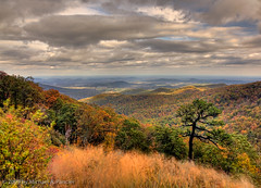 Shenandoah National Park (Michael Pancier Photography) Tags: autumn snow virginia washingtondc capital nationalparks shenandoahvalley hdr seor shenandoahnationalpark photomatixpro floridaphotographer michaelpancier michaelpancierphotography landscapephotographer fall2009 buckhollowoverlook ctvb wwwmichaelpancierphotographycom hmlx33 seorcohiba