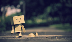 Stroll in the park (Kelvin ) Tags: explore danbo revoltech  danboard