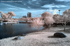 IR EffectLotung Sports Park, Taiwan  Oct. 31, 2009 (*Yueh-Hua 2016) Tags: county sky canon ir eos landscapes scenery taiwan infrared l  scenes yilan  township   luodong    horizontalphotograph 400d canoneos400d    l  canonef1635mmf28liiusm  ir 2009october lotungsportspark