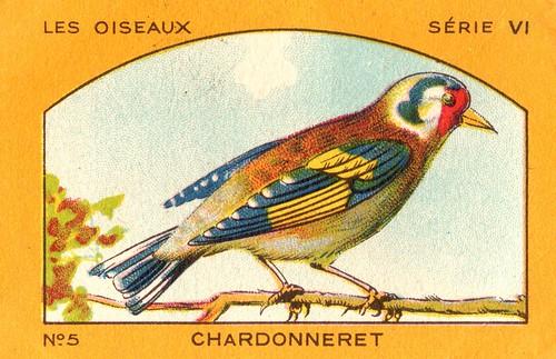 milliat oiseaux005