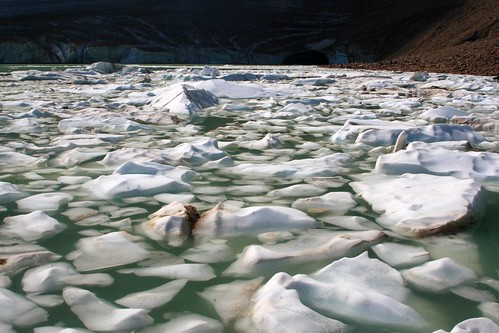 Ice breaking up on Clavell Lake in Jasper National Park (by Alaskan Dude)