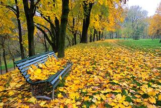 Milano, l'autunno al Parco Monte Stella - Novembre 2009