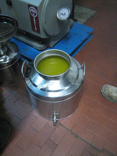 Olive Oil_Frantoio 076