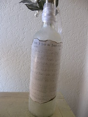 Altered Wine Bottle Back
