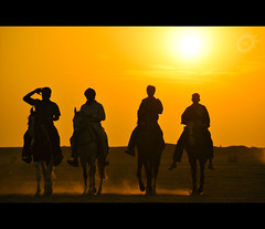 As I walk along... (Yug_and_her) Tags: life light sunset horses india men silhouette sand nikon desert candid riding dust incredible jaisalmer rajasthan d90
