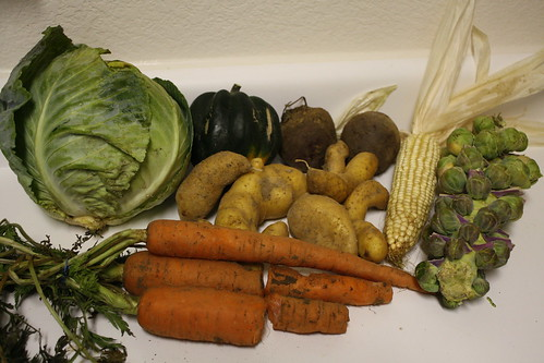 Farm Share Haul, 12/09/09