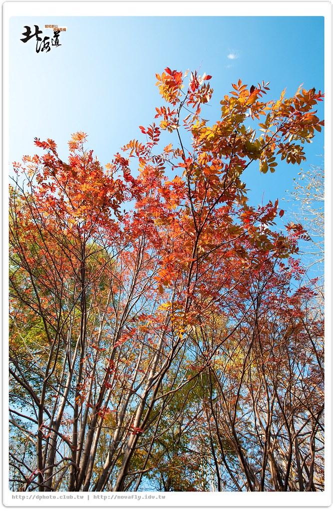 [北海戀]昭和新山.洞爺風情