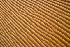 "Sand Patterns - background (IronRodArt - Royce Bair (""Star Shooter"")) Tags: abstract texture nature sand pattern shadows ripple background patterns dunes sandy dune wave textures backgrounds ripples grains abstracts sands wavy"