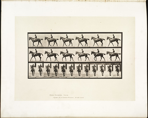 Animal locomotion. Plate 580