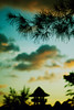 Along the Watch Tower (DSC3620) (Fadzly @ Shutterhack) Tags: trees sunset cloud tower leaves silhouette watch nikond50 malaysia cloudscape terengganu watchtower marang conifer kualamarang