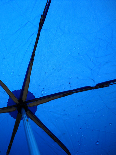 Raindrops on my blue umbrella