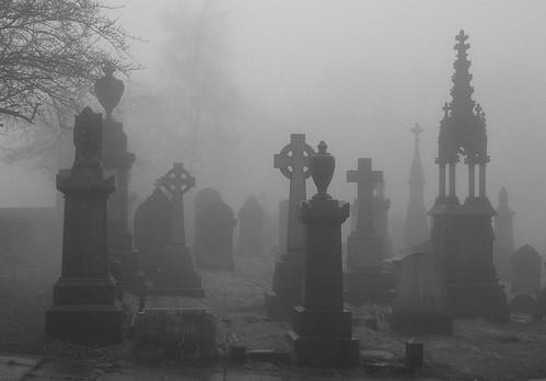 Fog 5