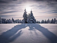 Casting Shadows (andywon) Tags: morning winter light sky sun snow cold nature germany landscape deutschland shadows schwarzwald blackforest firs badenwrttemberg kandel explored pprowinner gettyimagesgermanyq1