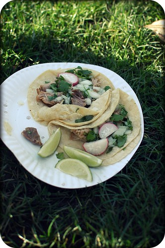 tacos on the grass